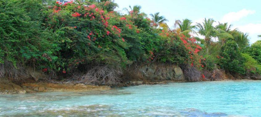 Круиз до Източни Кариби с Carnival Breeze – част 4-та – Антигуа /Antigua/
