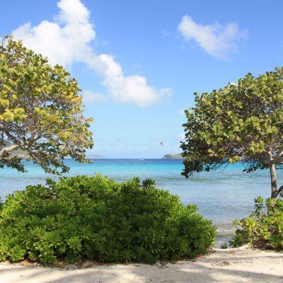 Sapphire beach St Thomas USVI
