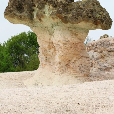 Каменните гъби - розова сонова от минерала клиноптилолит и зеленикава горна част от минерала селадонит
