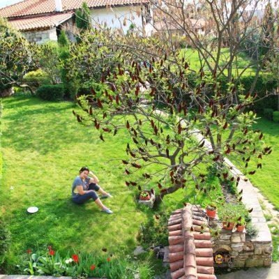 Ради се наслаждава на зеленината и спокойствието
