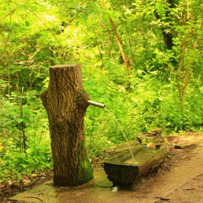 Парк Минерални бани, Ветрен, Бургас