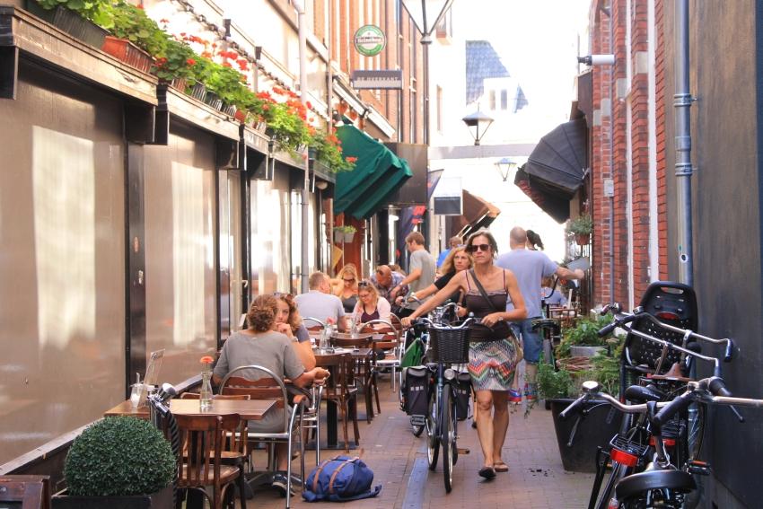 Paarlaarsteeg street, Haarlem