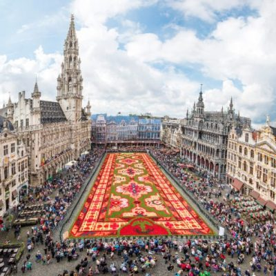 Снимка : http://www.flowercarpet.brussels/en