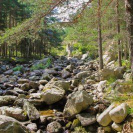 Eco path Beli Iskar
