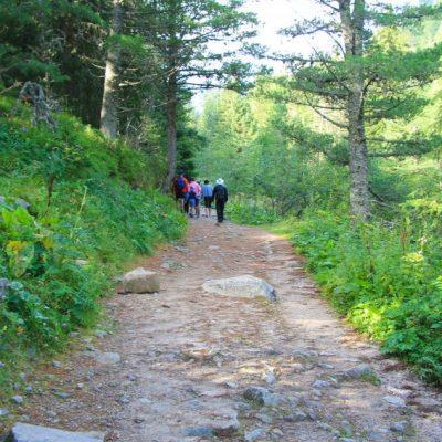 Пътеката към хижа Мальовица