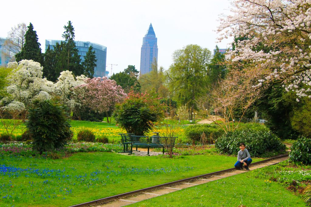 Palmen Garten Frankfurt