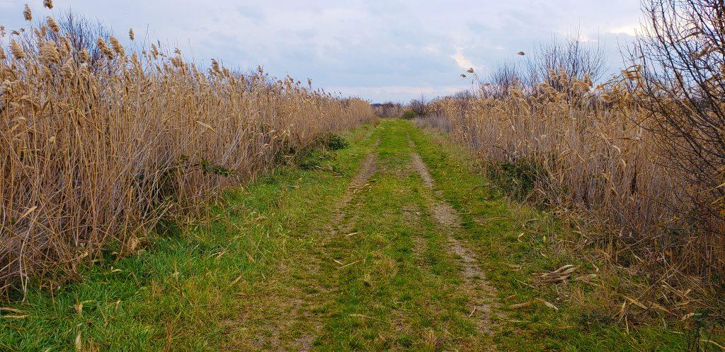 Маршрут Пътят към резервата
