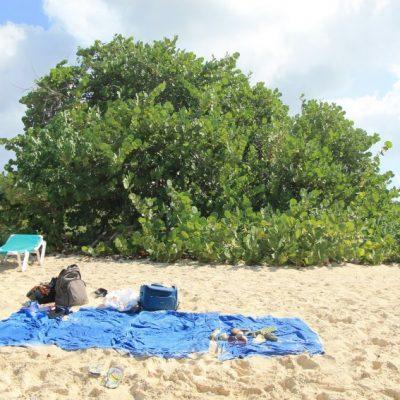 Нашето местенце на плажът Мулет бей