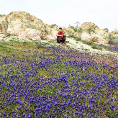 Каменните гъби край с. Бели пласт и поляната с мускари