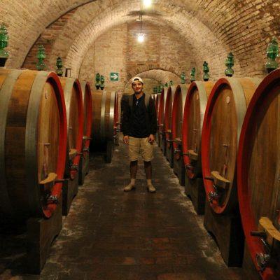 Във винарска изба в Монтепулчиано