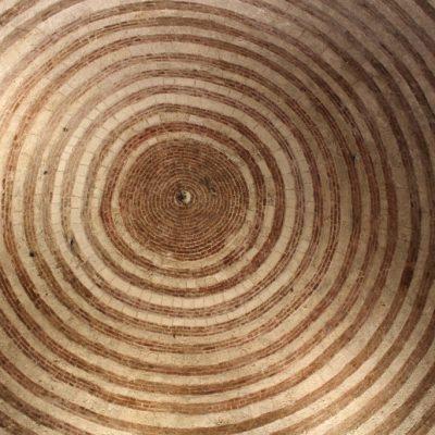 Тавана на църквата, казват, че е написана от камък книга, която крие местоположението на Светия Граал