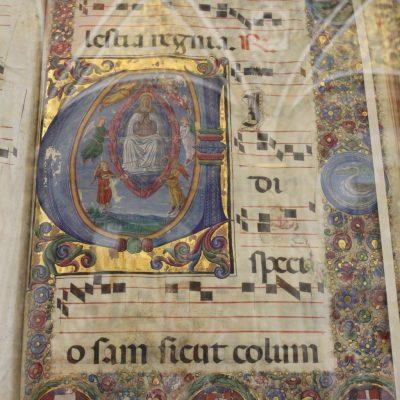 Книгите в библиотеката Libreria Piccolomine, razpolovena w katedralata na Siena