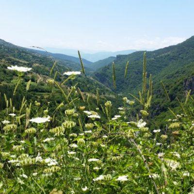 Пътят между Лещен и Ковачевица