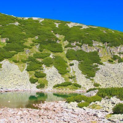 Четвъртото езеро